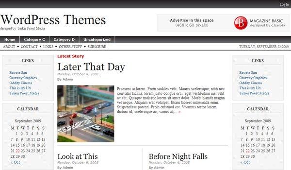 Magazine Basic WordPress Theme Review