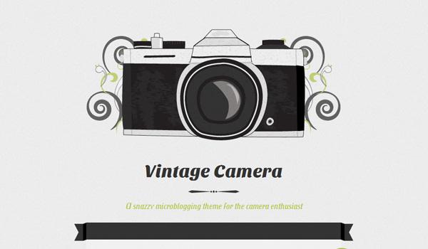 Vintage Camera WordPress Theme Review
