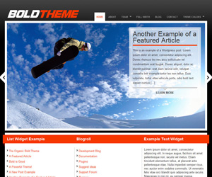 Bold Theme by Organic Themes
