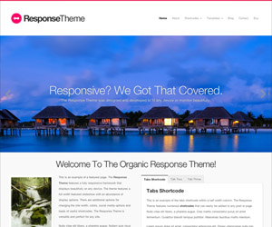 Response Theme by Organic Themes
