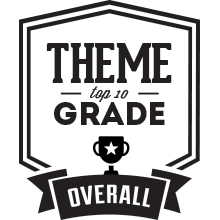Top 10 Theme Providers